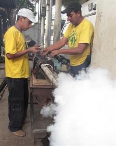Fumigacion Feb 2010
