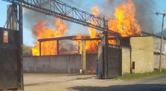 Fire Destroys Pallet Factory